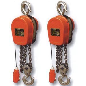 电动环链葫芦,链条式电动环链葫芦